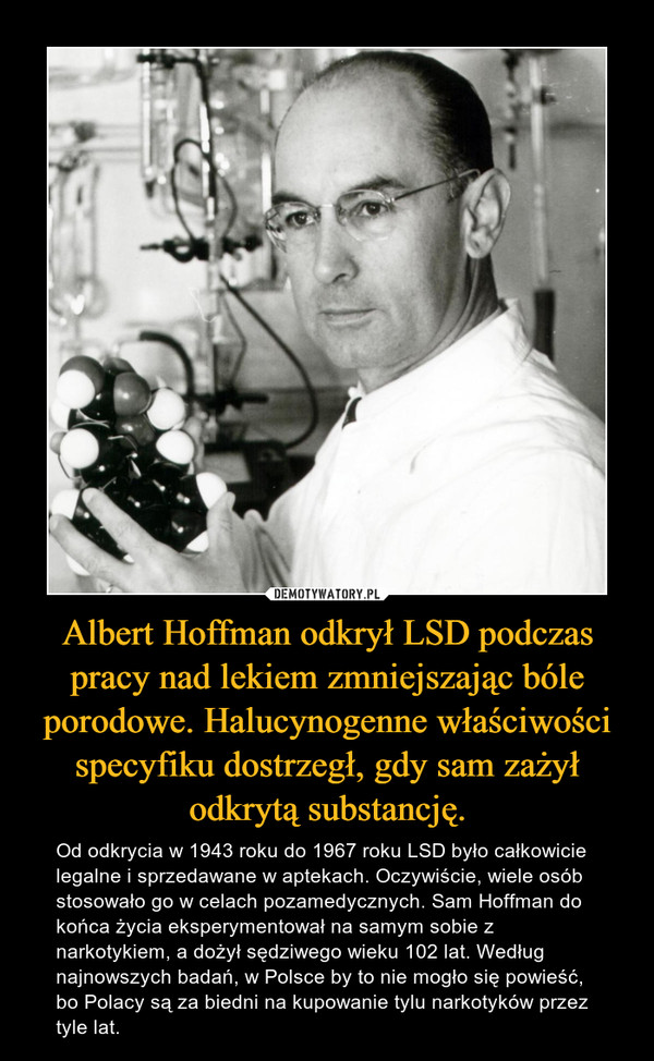 Albert Hoffman odkrył LSD podczas pracy nad lekiem zmniejszając bóle porodowe. Halucynogenne właściwości specyfiku dostrzegł, gdy sam zażył odkrytą substancję. – Od odkrycia w 1943 roku do 1967 roku LSD było całkowicie legalne i sprzedawane w aptekach. Oczywiście, wiele osób stosowało go w celach pozamedycznych. Sam Hoffman do końca życia eksperymentował na samym sobie z narkotykiem, a dożył sędziwego wieku 102 lat. Według najnowszych badań, w Polsce by to nie mogło się powieść, bo Polacy są za biedni na kupowanie tylu narkotyków przez tyle lat.