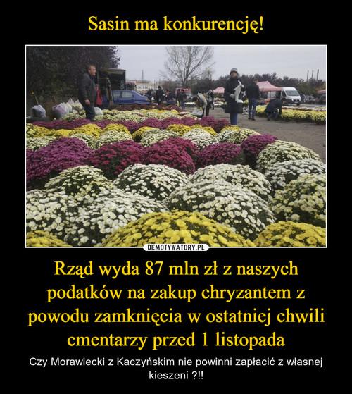 Sasin ma konkurencję! Rząd wyda 87 mln zł z naszych podatków na zakup chryzantem z powodu zamknięcia w ostatniej chwili cmentarzy przed 1 listopada