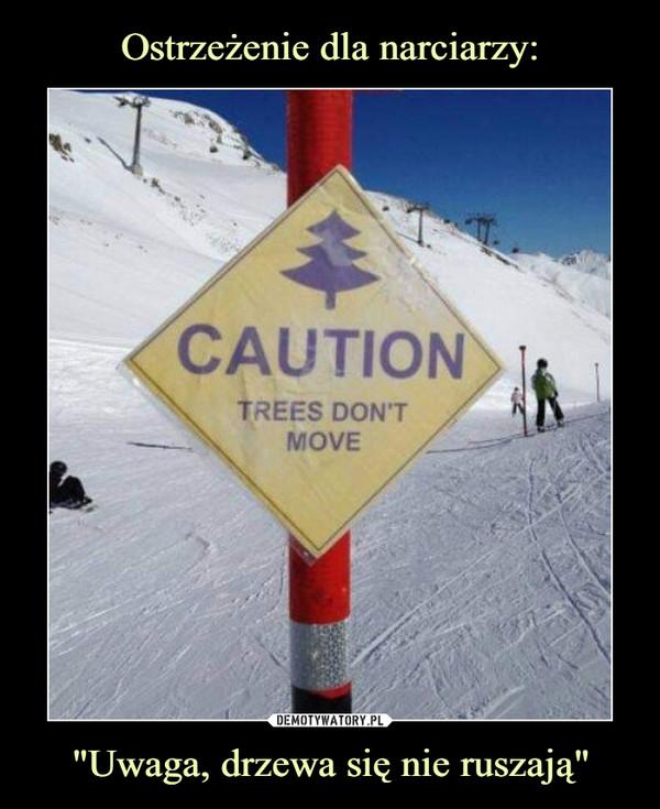 """""""Uwaga, drzewa się nie ruszają"""" –"""