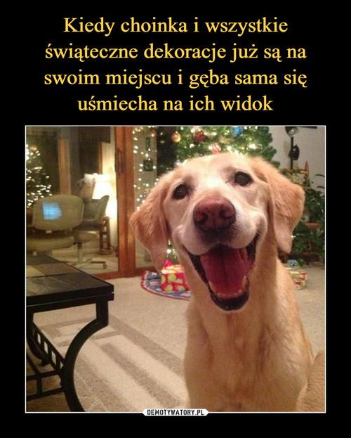 Kiedy choinka i wszystkie świąteczne dekoracje już są na swoim miejscu i gęba sama się uśmiecha na ich widok