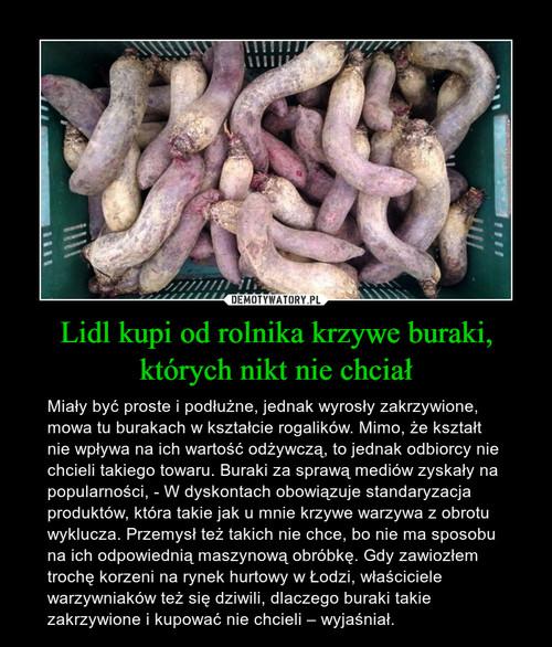 Lidl kupi od rolnika krzywe buraki, których nikt nie chciał