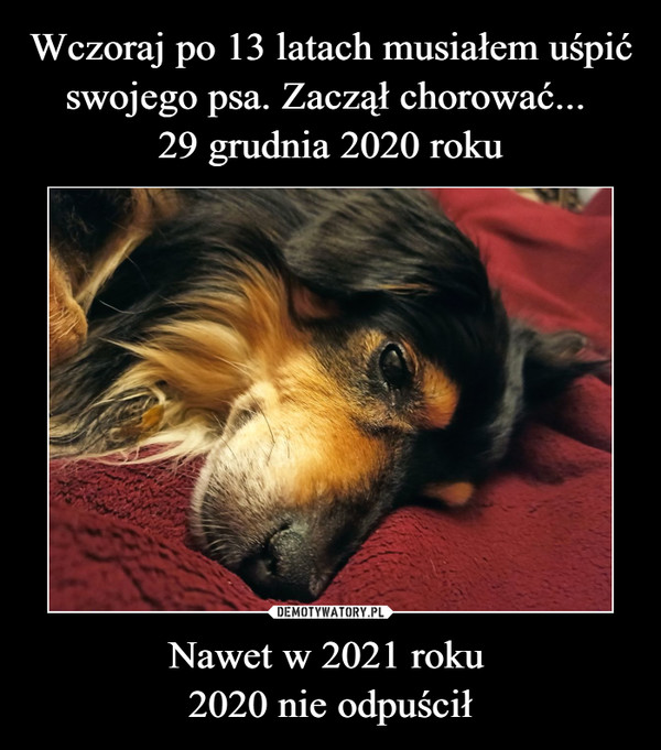 Nawet w 2021 roku 2020 nie odpuścił –