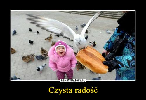 Czysta radość