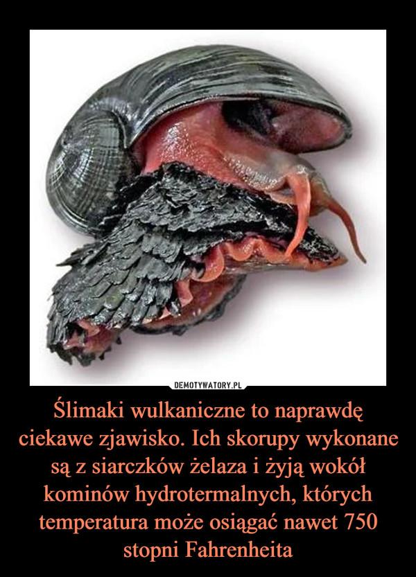 [Obrazek: 1612938658_eirccr_600.jpg]