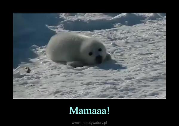 Mamaaa! –
