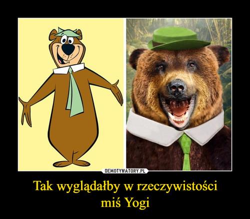Tak wyglądałby w rzeczywistości miś Yogi