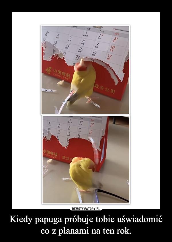 Kiedy papuga próbuje tobie uświadomić co z planami na ten rok. –