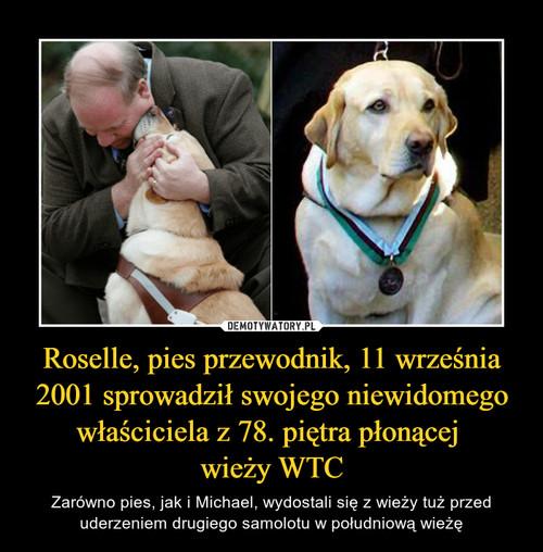 Roselle, pies przewodnik, 11 września 2001 sprowadził swojego niewidomego właściciela z 78. piętra płonącej  wieży WTC