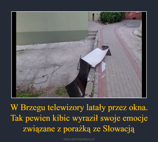 W Brzegu telewizory latały przez okna. Tak pewien kibic wyraził swoje emocje związane z porażką ze Słowacją –
