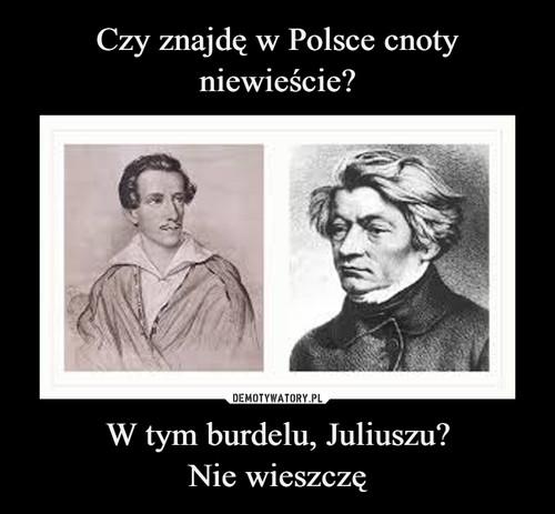 Czy znajdę w Polsce cnoty niewieście? W tym burdelu, Juliuszu? Nie wieszczę