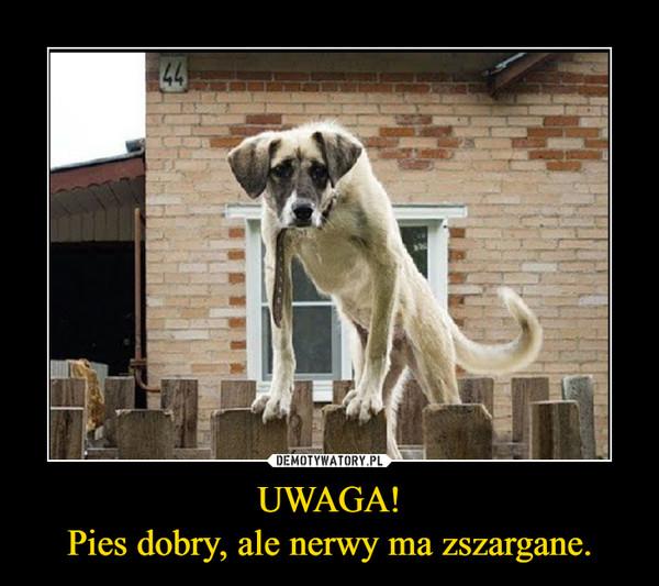 1542116463_vpuala_600.jpg