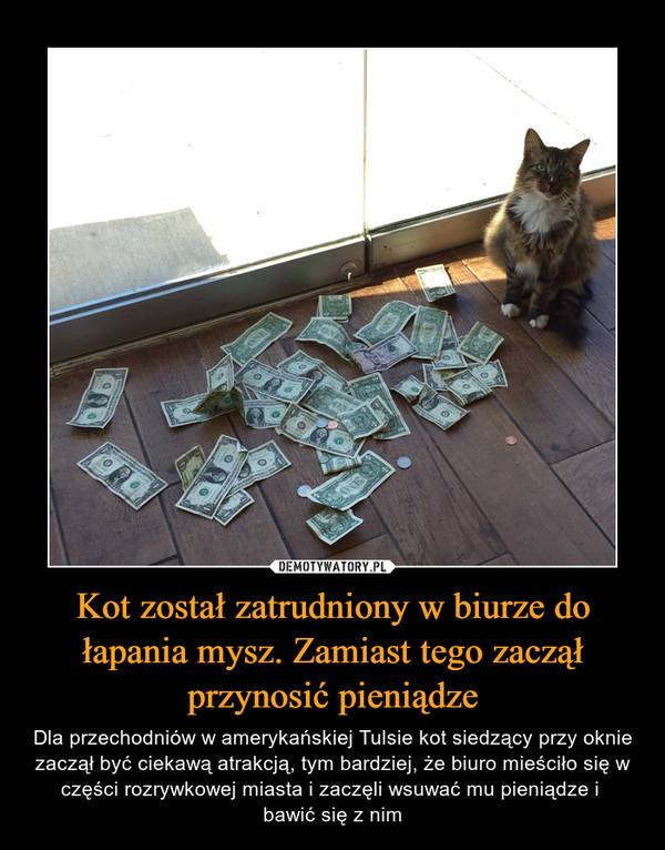 Kot został zatrudniony w biurze do łapania mysz. Zamiast tego zaczął przynosić pieniądze
